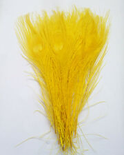 Wholesale!10-100pcs natural peacock tail feathers 10-12inches/25-30cm Decoration