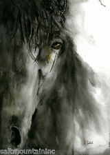 Equestrian Horse Art Print, Equine Watercolor Painting, Artist - Teresa Wade