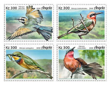 Angola 2018 fauna   Bee-eaters, birds  201901
