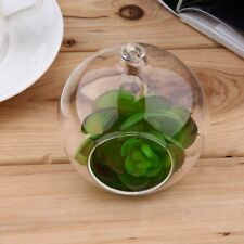 Hanging Glass Flowers Plant Vase Terrarium Container Home Garden Ball Decors