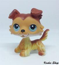 Authentic Littlest Petshop LPS Pet Shop : Chien Dog Colley 58 bis
