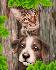 CAT AND DOG FRIENDS PAINT BY NUMBERS CANVAS PAINTING KIT 20 x 16 ins WITH FRAME