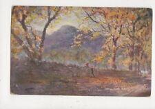 Avenue To Tor Achilty SL Morgan [Tuck 7134] Strathpeffer Postcard 844a