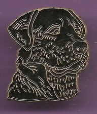Pin's pin CHIEN LABRADOR (ref CL13)