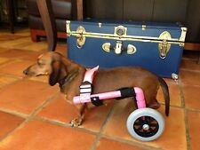 Custom Dog Wheelchairs/ Light Weight/ Reay to Roll. Made In The USA!
