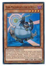 Yu-Gi-Oh Djinn Maledincantatore di Rituali THSF-IT038 Super Rara ITA