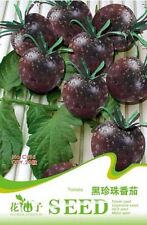 1 Pack 20 VegetablesSeeds Mini Cherry Dark Black Tomato Seed Healthy Fruit C095