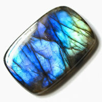 Cts. 31.30 Natural Blue Fire Labradorite Cabochon Cushion Cab Loose Gemstones