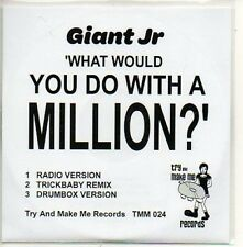 (754D) Giant Jr, What Would You Do With a Million DJ CD