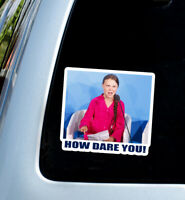 x2 How dare you ! meme Greta Thunberg decal car sticker ...