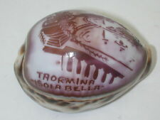 Cowrie Shell Engraved Taormina Isola Bella 3 Inch Shell R11554