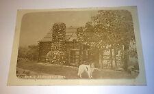 Rare Antique Rppc Rosalie At Steerage Rock, Collie Pet Dog! Real Photo Postcard!