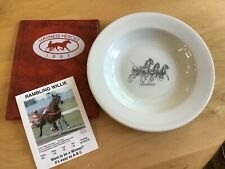 1991 HARNESS RACING HEROES TRADING CARDS LOT OF 35 + Foxboro collector plate