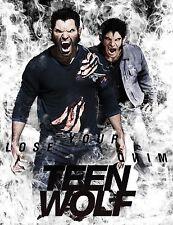 "Teen Wolf Tv Show Fabric poster 17"" x13"" Decor 01"