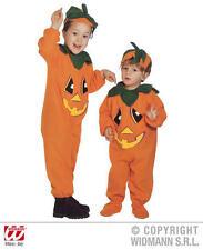 Childrens Pumpkin Fancy Dress Costume Halloween Outfit 2-3 Yrs