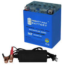 Mighty Max Ytx14Ah Gel Battery Replaces Arctic Cat 650 Trv 09 + 12V 2Amp Charger