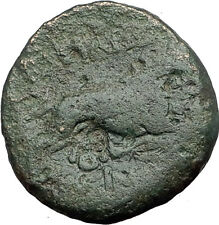 LYSIMACHOS 323BC Authentic Ancient Greek Coin ALEXANDER the GREAT & LION i62647