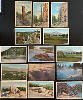 Lot of 14 Original Vintage Postcards - Yellowstone National Park - Tunnels +