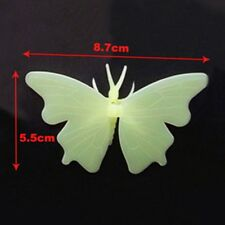 Fluorescent Butterfly Wall Stickers Dark In Art Decal Glow Kid Home b