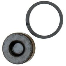 Hayes Replacement Stroker Ryde Caliper Piston Kit 98-21975