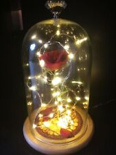 Enchanted Rose Glass Dome Light Up Romantic Gift Beauty And The Beast