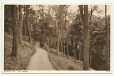 Photochrom RPPC No. 72771 Colwyn Bay, The Woods, Wales