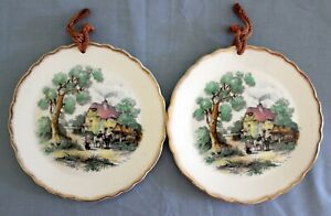 2 Vintage Royal Staffordshire Ceramics Made in England Wall Display Plates