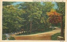 Utica New York~Roscoe Conkling Park~Hairpin Turn~Stone Fence Guard~1952~Postcard