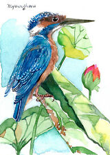 ACEO Limited Edition - Kingfisher