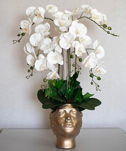 White Orchid Arrangement in unique gold women vase ❤❤❤