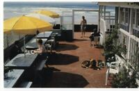 042020 VINTAGE SAN DIEGO CA POSTCARD DEL MAR BEACH COTTAGE INN @ RANCHO SANTA FE