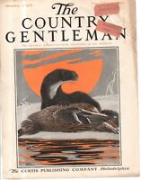 1916 Country Gentleman Cover - January 1 - Otter gets the duck - Charles L Bull
