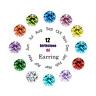 12 Pairs Women Everyday Stud Post Earrings CZ Month Birthstones Stud Earrings