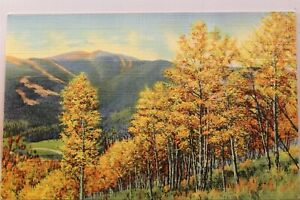 Scenic Autumn Trees Hills Magic Colors Postcard Old Vintage Card View Standard