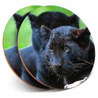 Floating Otter Black Rim Glass Coaster Animal Breed Gift AO-3GC