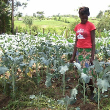 $100 Charitable Donation For: Seed and fertilizer for a family of 6
