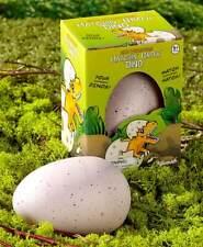 "Ginormous Hatchin' Growâ""¢ Dino Egg - Dinosaur Toy - Set of 2"