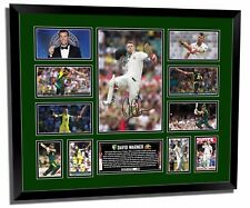 DAVID WARNER #1 SIGNED LIMITED EDITION FRAMED MEMORABILIA