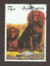 Boykin Spaniel * Int'l Dog Postage Stamp Art Collection * Great Gift Idea *