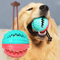 KQ_ Pet Dog Puppy Leakage Food Ball Suction Cup Squeaky Molar Chew Toy Sur