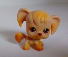 Littlest PET SHOP BABY Spaniel Cane Occhi Marroni Autentici LPS #26 DA COLLEZIONE