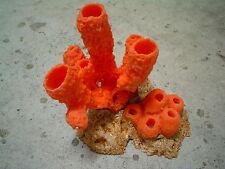 Sponge Island Insert