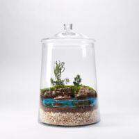 Handmade Clear Glass Bonbon Jar Terrarium/Planter Tank Jar Heigh 38 cm H