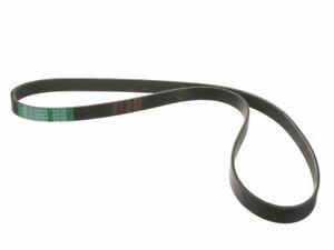 Primary Mitsuboshi Multi Rib Belt fits Chrysler LHS 1994-1997, 1999-2001 59CZVW