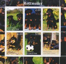 ROTTWEILER DOG CANINE ANIMAL PET TADJIKISTAN 2000 MNH STAMP SHEETLET