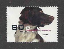 Dog Photo Portrait Postage Stamp DRENTSE DRENTSCHE PATRIJSHOND Netherlands MNH