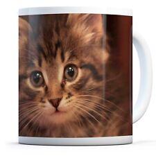 Cute Tabby Kitten - Drinks Mug Cup Kitchen Birthday Office Fun Gift #15946