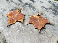Iridescent Copper Dipped Real Maple Tree Leaf Stud Post Earrings Jewelry CMEP