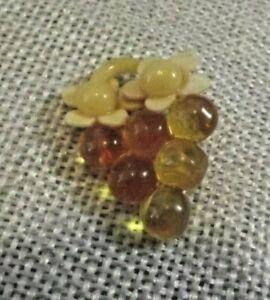 Vintage Celluloid Grapes Button (1800)