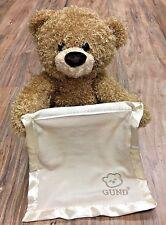 GUC Gund Brown Peek A Boo Teddy Bear w Blanket